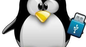 CD/DVD Rom Olmadan - USB ile Linux Kurulumu 2