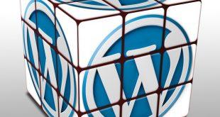 Wordpress Hafıza Artırma - WordPress Memory Exhausted Hatası Çözümü 2