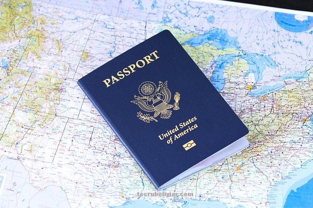 pasaport vize